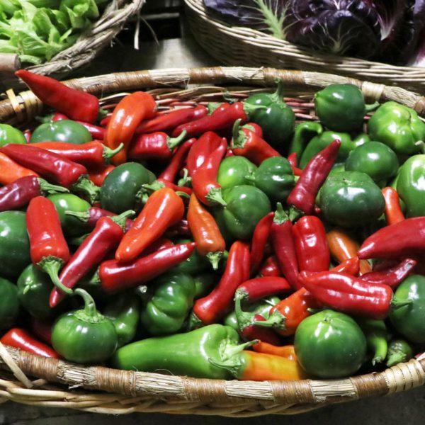 Peperoni biologici rossi e verdi
