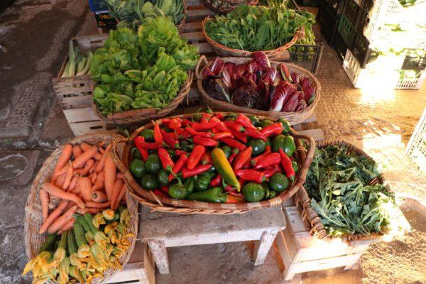 Ortaggi e verdure biologiche